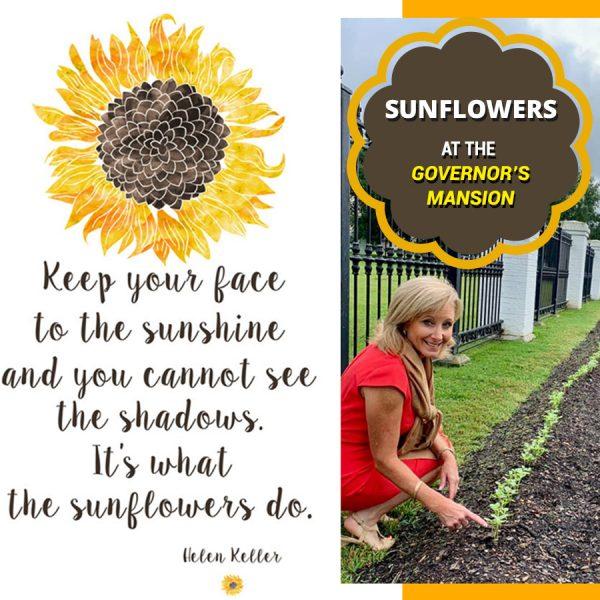 LFF_blog_sep2019_sunflowers