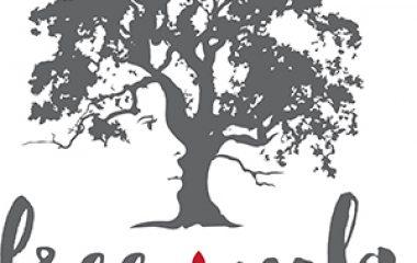 freenola-logo