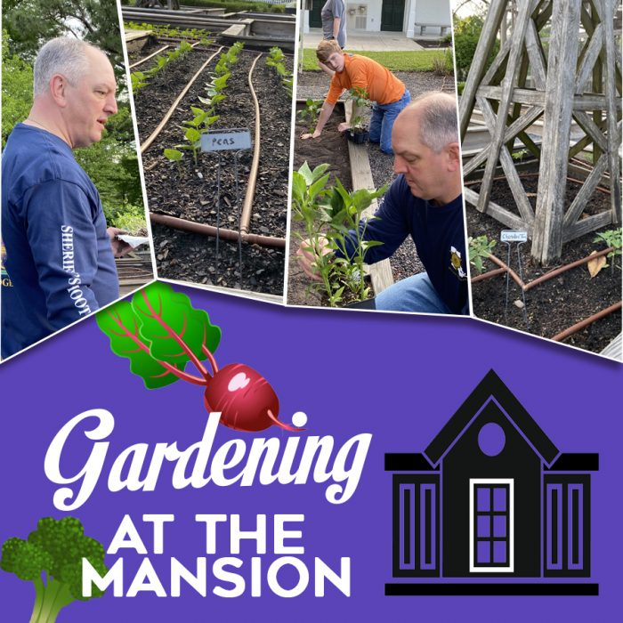 LFF_blog_may2020_governorsmansion_garden_main