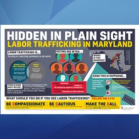 Maryland - Hidden in Plain Sight