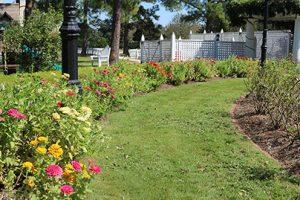 LFF_blog_September2020_Garden02