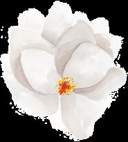 layouts-flower01
