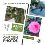 LFF_Blog_April2021_Mansion_Garden