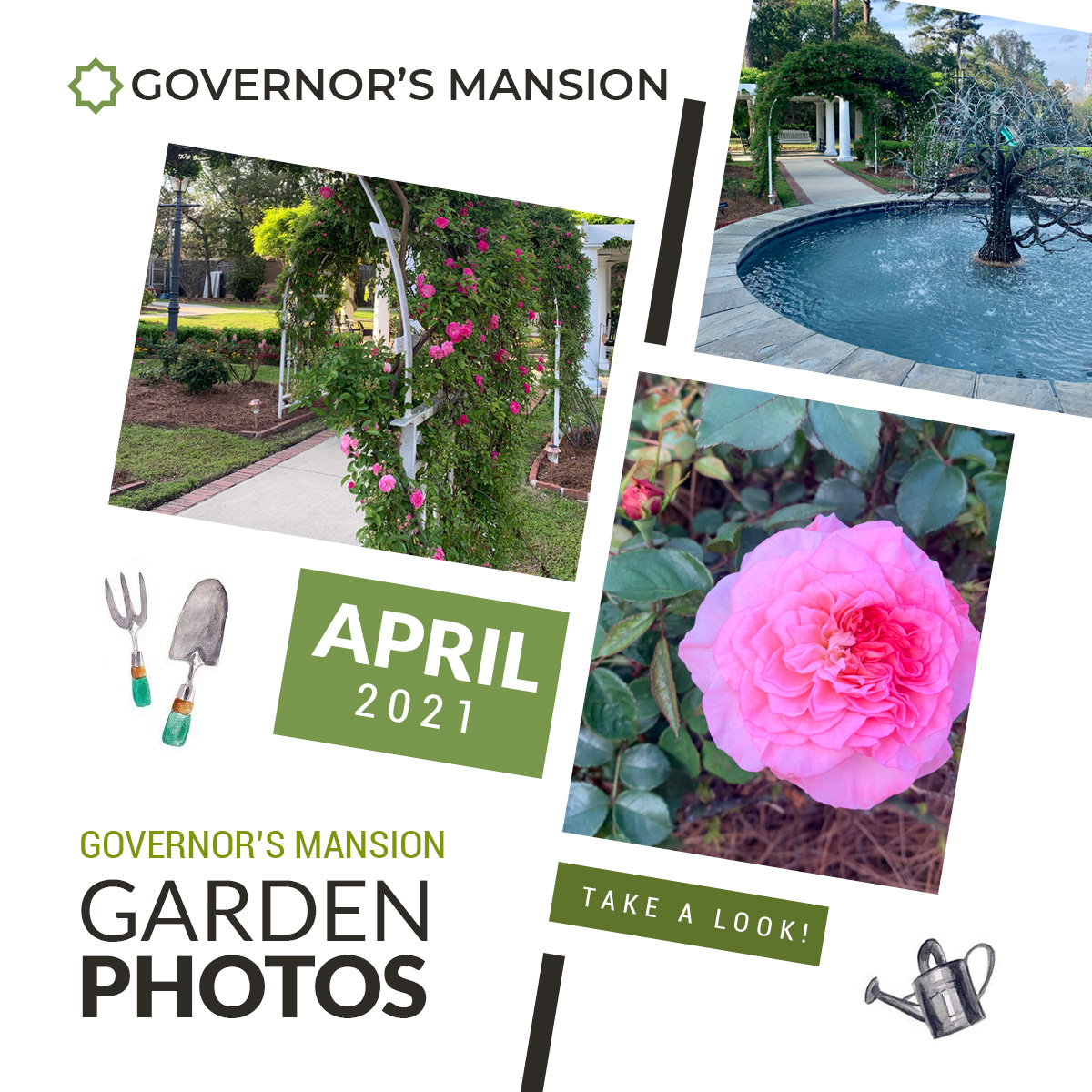 The Governor's Mansion: Garden Photos