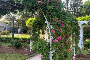 LFF_Blog_April2021_Mansion_GardenPhotos04