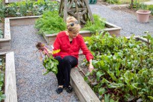 LFF_blog_april2020_recipe_garden01